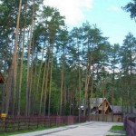 Деревянный дом 209 кв. м.