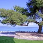 Греция, Македония и Фракия — коттедж