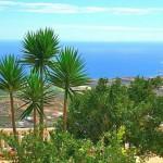 Испания, Канарские о-ва, Адехе (Тенерифе) — вилла